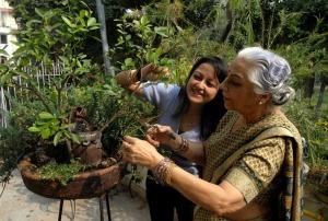India-gardening